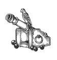 parrot on cannon engraving vector image