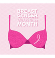 Pink bra and ribbon for breast cancer vector image
