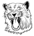 Big Cat Head vector image vector image