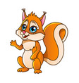 cartoon squirrel isolated vector image vector image