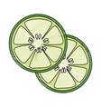 cucumber slices icon vector image vector image