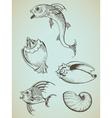 fish and sea shells vector image vector image