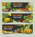 fruits and vegetables on isolated banners vector image vector image