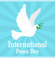 pigeon international peace day background flat vector image