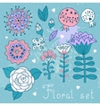 Set of floral elements isolated for your design vector image