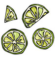 set slices of lime isolated on white background vector image vector image