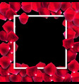 abstract natural rose petals frame background vector image vector image