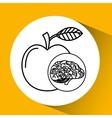 apple brain school knowledge vector image vector image