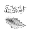 detailed hand drawn feathers vector image vector image