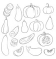 drawing pumpkins vector image