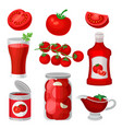 flat set of tomato food and drinks healthy vector image