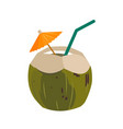 green coconut water drink with drinking straw and vector image