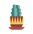 home cactus icon vector image