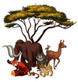 isolated picture african animals vector image vector image