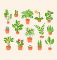set houseplants vector image