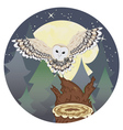 Barn Owl on a Tree Stump3 vector image vector image