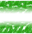fir green branches pattern vector image vector image