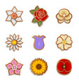 set isolated flower gingerbread cookies vector image vector image