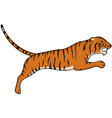 tiger cartoon vector image vector image