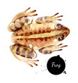 watercolor witch potion frog painted isolated vector image vector image