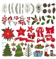 Christmas tree branchesflowersdecor Collection vector image vector image