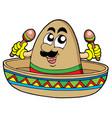 mexican sombrero vector image
