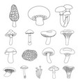poisonous and edible mushroom outline icons in set vector image vector image