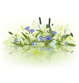 prairie grass and flowers vector image vector image