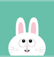 white bunny rabbit looking up cute cartoon vector image vector image