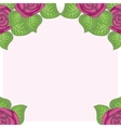 beautiful floral background of roses vector image vector image