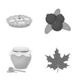 cranberry pumpkin pie honey pot maple leaf vector image