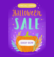 halloween sale vector image vector image