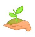 Hands with green sprout icon cartoon style vector image vector image