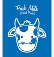milk fresh vector image