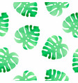 monstera floral color watercolor seamless vector image vector image