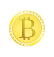 realistic golden bitcoin coin vector image