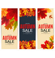 shiny autumn leaves sale banner business discount