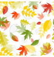 Shiny Autumn Natural Leaves Seamless Pattern vector image