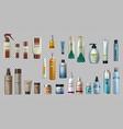 digital realistic bottles set collection vector image