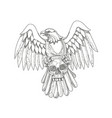 american eagle clutching skull doodle vector image vector image