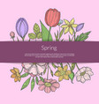 hand drawn flowers in bouquet under ribbon vector image