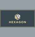 rd hexagon logo design inspiration vector image vector image