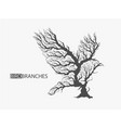 silhouette of bird from branches of tree vector image vector image