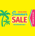summer sale special offer - concept horizontal ban vector image