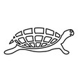turtle tortoise icon black color outline vector image
