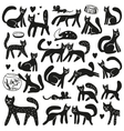 cats - doodles set vector image