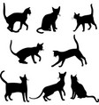 cats silhouettes collection vector image