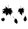 fall leaves silhouettes set vector image