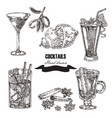 hand drawn sketch cocktail set vector image vector image