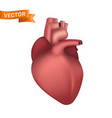 human heart internal organ 3d realistic vector image